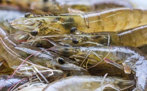 男人吃虾好吗 男人吃虾有什么好处 虾的做法有哪些